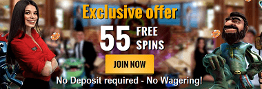 Casino Cruise 55 Free Spins Bonus